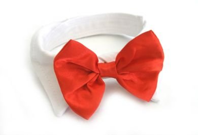 Dog Bow Tie Wedding Collar - Red Satin, Small (Neck 11-13