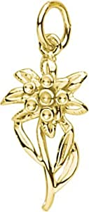 Rembrandt Charms Edelweiss Charm, 14K Yellow Gold