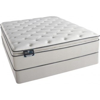 Queen Size Pillow Top Mattress Set back-15697