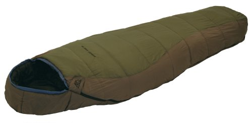 ALPS Mountaineering Desert Pine Mummy Sleeping Bag (0 Degree)