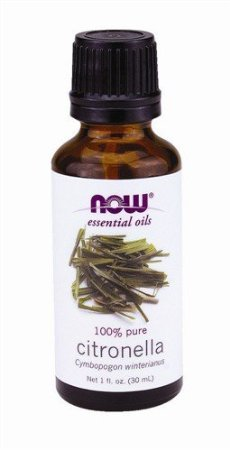 Now Foods Citronella Oil, 1 Ounce