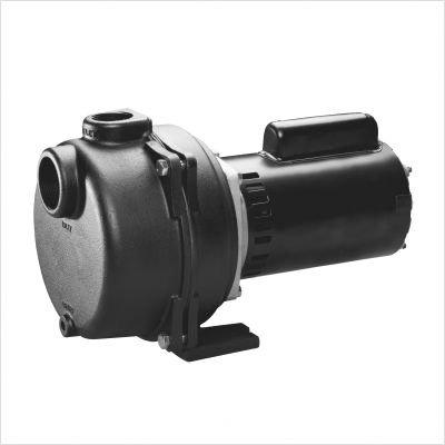 Wayne Wls200 2-Horsepower Cast Iron Lawn Sprinkling Pump