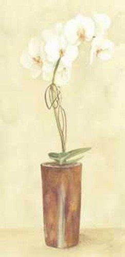 Chinese Flower Modern Vase 2 by Esther Lebrato . Art PRINT Poster 6.00 X 14.00
