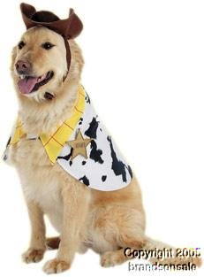 Pet Woody Dog Halloween Costume For Small Dogs