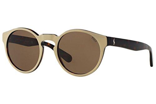 Polo PH4101 556473 Top Beige on Dark Havana/Brown Sunglasses Bundle-2 Items