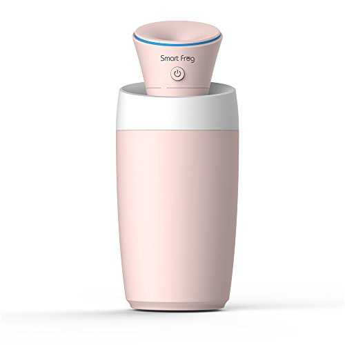 dbf portable nebulizer usb mute humidifier for baby room home car and office pink health. Black Bedroom Furniture Sets. Home Design Ideas