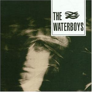 Waterboys - Best of...from