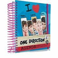 One Direction 1d Agenda Book Weekly & Monthly Planner & Note Pages Case Stickers by Sky High