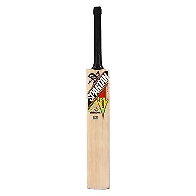 Spartan CG Hammer Kashmir Willow Cricket Bat, Full Size