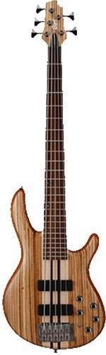 Bass Guitar Artisan