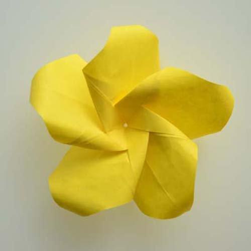 lafosse amp alexanders origami flowers kit lifelike paper