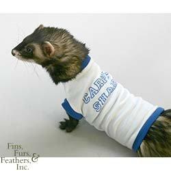 Marshall Medium Ferret T-Shirt, Blue