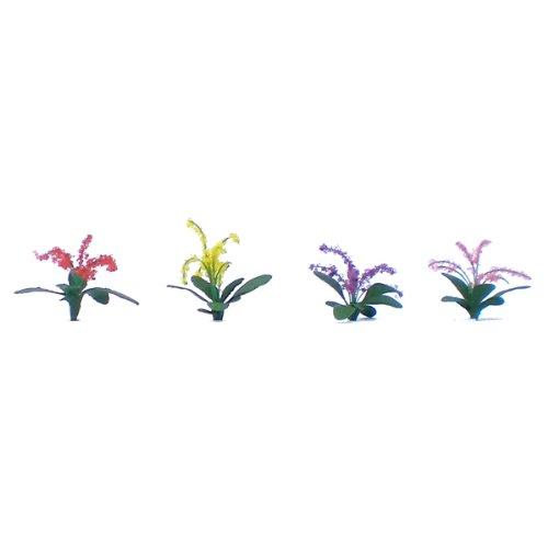 Flowering Plants Series: Petunias