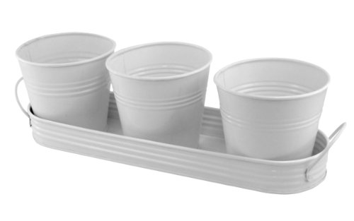 plaid-3-metal-planting-pots-in-tray-white