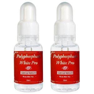 薬用PGホワイトニングPro リミテッド・エディション2 歯磨き はみがき 口臭予防 歯槽膿漏 歯肉炎 美白