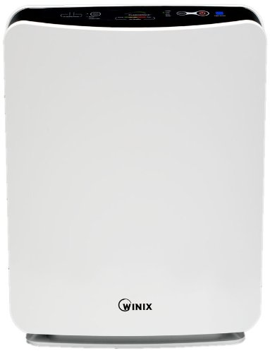 Image of Winix FresHome Model P300 True HEPA Air Cleaner with PlasmaWave (P300)