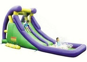 Double Inflatable Water Slide front-250227