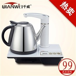 Electric Tea Kettle Stainless Steel front-641799