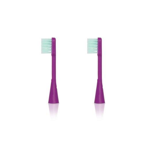 ベッタ 電動歯ブラシ ブラッシュミー 大人用替えブラシ パープル