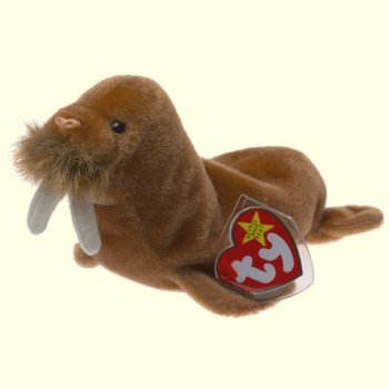 Ty Beanie Babies Paul the Walrus - 1