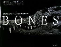 BONES ― 動物の骨格と機能美