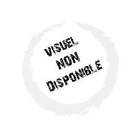 UPSIDE DOWN - Sturgess j. dunst k. Solanas j