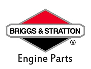 BRIGGS AND STRATTON 298984 RING SET-020