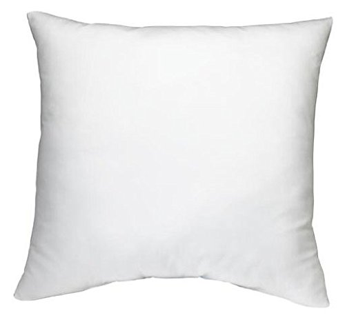 "Lowest Price! DreamHome - 16"" X 16"" Square Poly Pillow Insert"