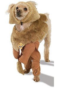 Wizard of Oz Cowardly Lion Pet Costume - XLarge