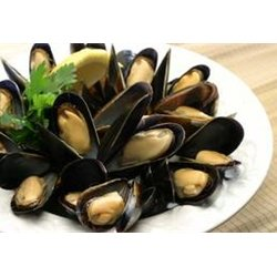 Fresh Maine Blue Mussels - 6 pounds