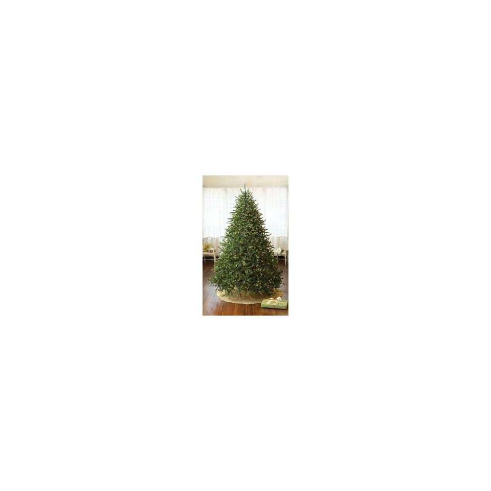 7.5 Pre Lit Stowe Spruce Artificial Christmas Tree   1000 Clear Lights #181180