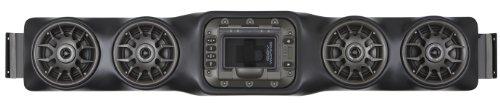 SSV Works WP-UO4L Universal Bluetooth IPOD 4 Speaker Overhead Weatherproof Audio System
