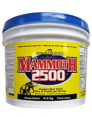 Interactive Nutrition Mammoth 2500 Chocolate Powder 4400g