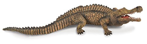 CollectA Sarcosuchus Toy
