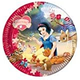 Disney Princess Snow White Theme 9 Inch Paper Plates - Pack of 10