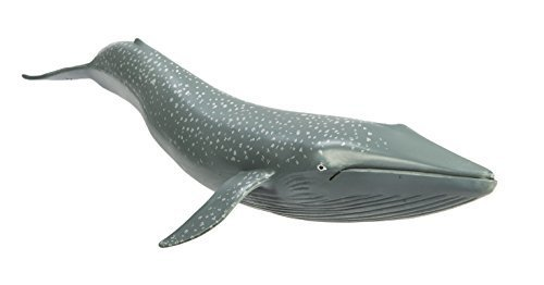 Safari Ltd  Wild Safari Sea Life Blue Whale