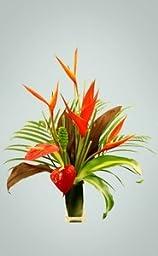 Tropical Taste