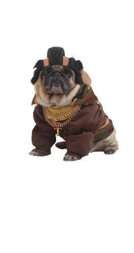 Pet P (Pity The Fool Pet Costume)