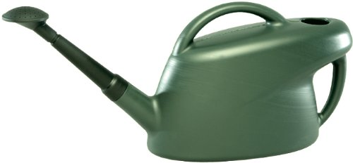 ebertSankey 10-Litre Standard Can (Green)