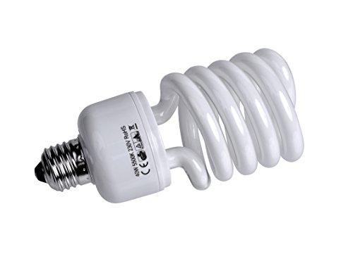 F000156 Spiral Tageslichtlampe (E27/40 Watt)
