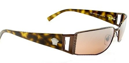 Versace Sunglasses VE2021 1006/6U Dark Brown/Brown