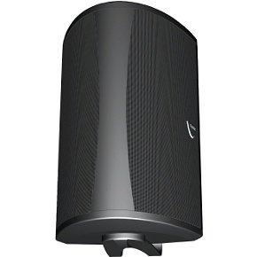 Definitive Technology Aw 5500 Outdoor Speaker (Single, Black)