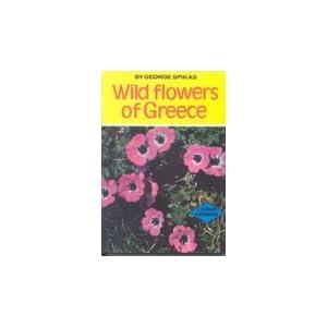 Mediterraneo Publications