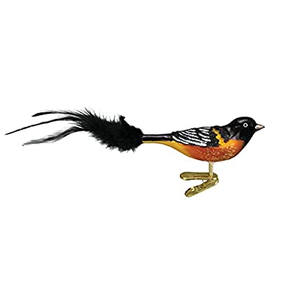 Old World Christmas Baltimore Oriole Glass Blown Ornament