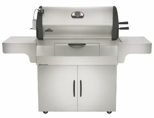 Napoleon PRO605CSS Charcoal Professional Grill bestellen