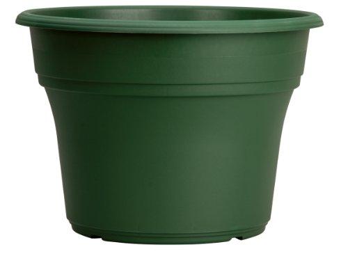 Akro Mils Pa12000b71 Panterra Pot Green 12 Inch