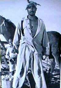 4X6 Postcard Tupac Cowboy front-55831