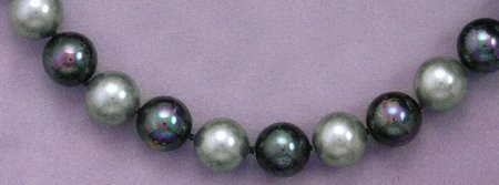 Black and Silver 12mm Lacquered Shell Bead Necklace, 18 + 2 in Ext.