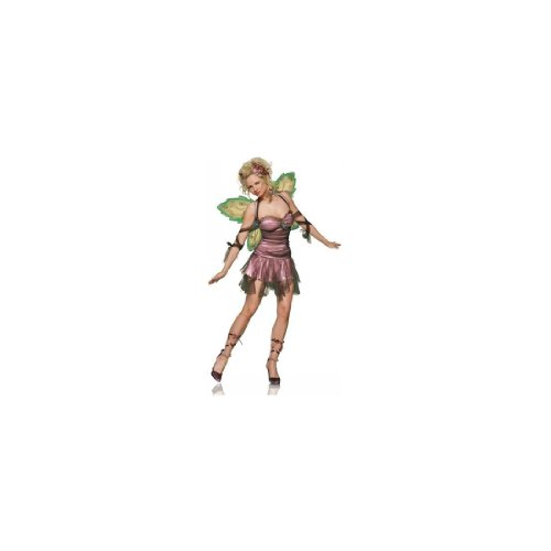 Shimmery Pixie Adult Costume