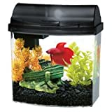 31Lp2FNjyPL. SL160  Aqueon Aqueon 01205 1 Gallon Mini Bow Aquarium Kit, Black